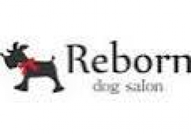 dog salon Reborn