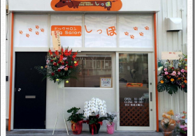 Dog Salon しっぽ