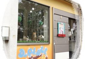 Trimming Salon D-PLACE 武蔵野本店